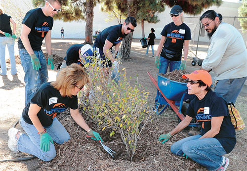 "Pepperdine University students helped to ""beautify"" Koreatown on October 15, 2013. (Sang Hyuk Park)"