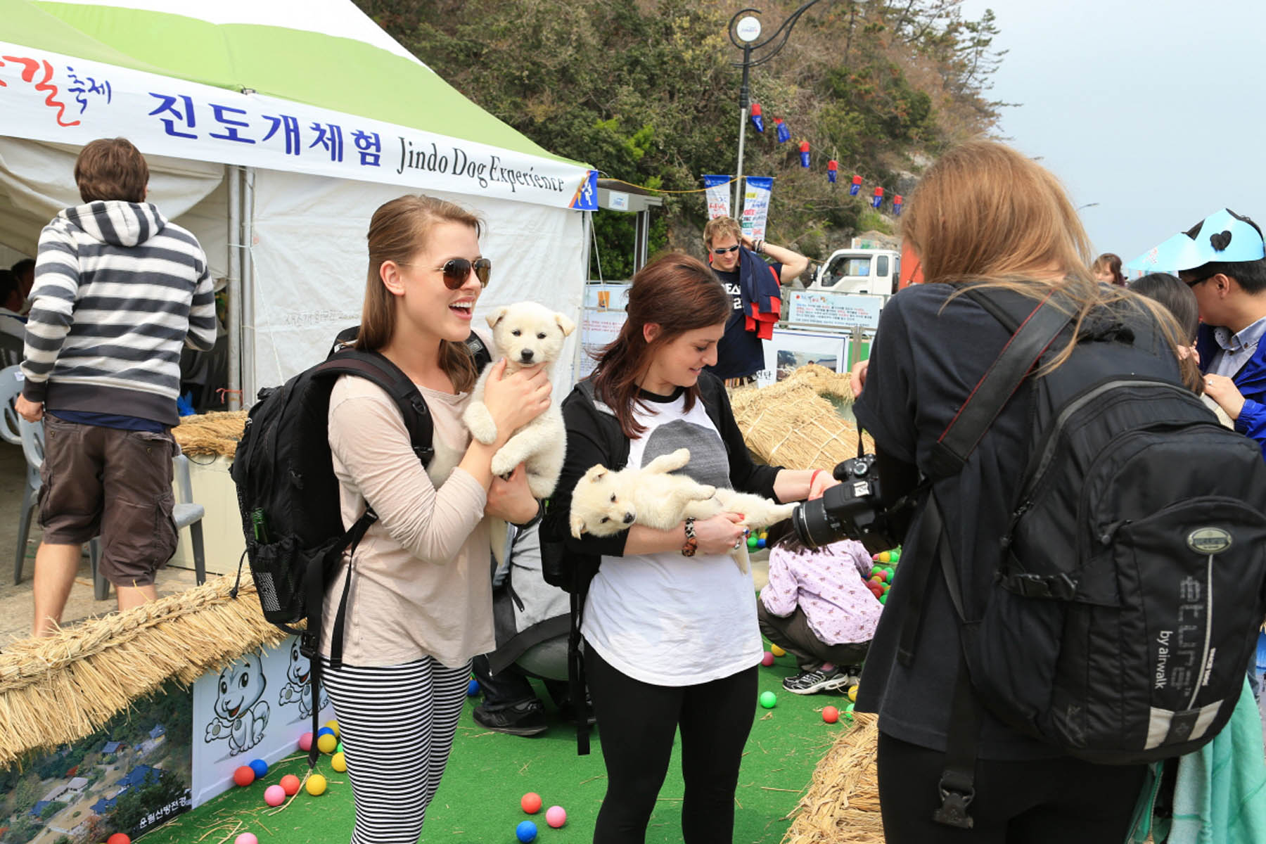 A photo from last year shows International tourists enjoying the 'Jindo Dog experience.' (Newsis)