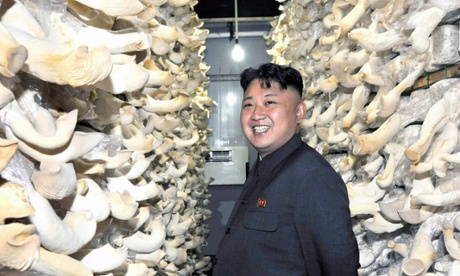 North Korean leader Kim Jong-un tours a mushroom factory affiliated with North Korea's military unit 534. (Photograph: Rodong Shinmun)