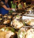 chicken soup, samgyetang