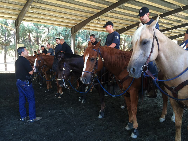 Officers of LAPD's Mounted Platoon during a training session at Ahmanson Equestrian Center.
