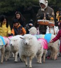 A zookeeper wearing a sheep's hat feeds a small herd of sheep wearing hanbok, a Korean traditional costume, surrounded by children at Everland in Yongin, Gyeonggi Province, Monday, three days before the New Year. (Yonhap)