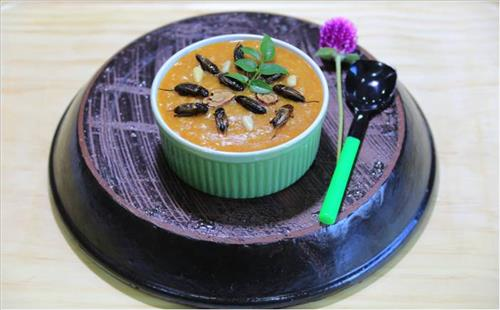 Sweet pumpkin porridge topped with dried cricket (Photo courtesy of 2014 Agribioexpo/Yonhap)