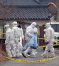 Bird flu is highly contagious so authorities are taking necessary measures to contain the virus. (Yonhap)