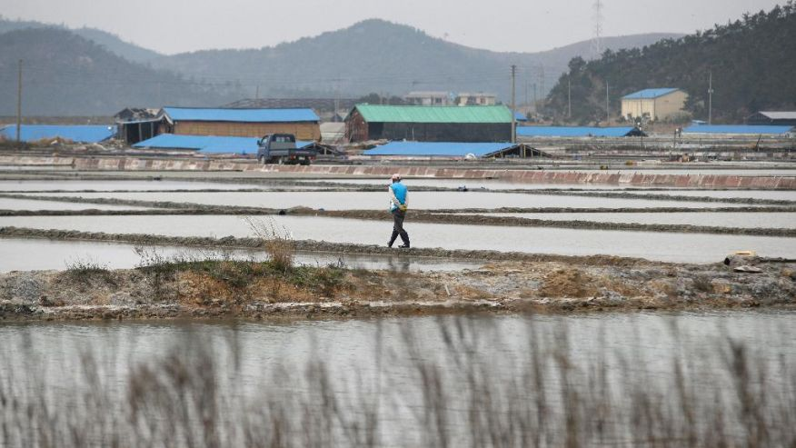 a man walks through a salt farm on Sinui Island, south of Seoul, South Korea. Life as a salt-farm slave was so bad Kim Jong-seok sometimes fantasized about killing the owner who beat him daily. Freedom, he says, has been worse. In the year since police emancipated the severely mentally disabled man from the farm where he had worked for eight years, Kim has lived in a grim homeless shelter, preyed upon and robbed by other residents. He has no friends, no job training prospects or counseling, and feels confined and deeply bored. (AP Photo/Lee Jin-man)