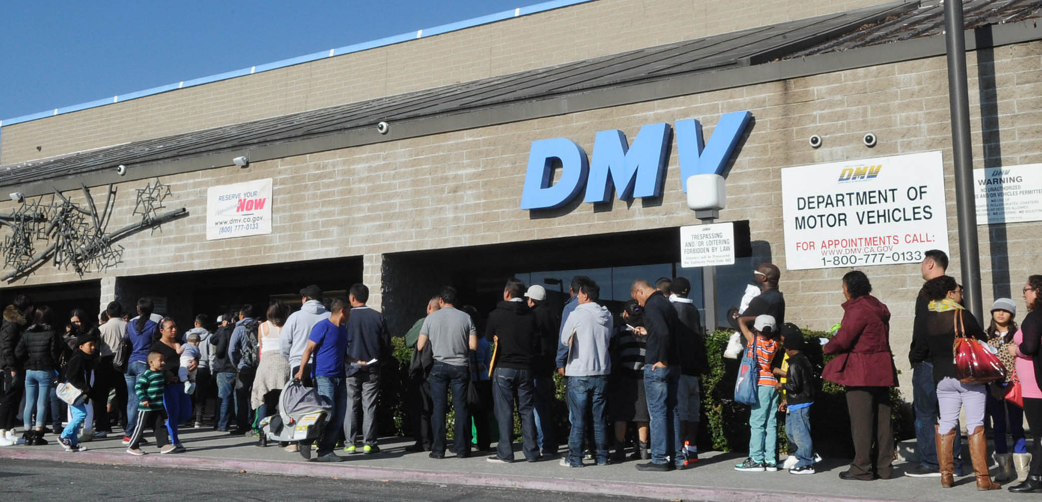 Undocumented immigrants begin getting driver s licenses in for California state department of motor vehicles