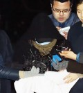 The daycare employee surnamed Yang admitted to hitting the child during an interview. (Korea Times file)