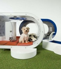 "Samsung's $30,000 ""Dream Doghouse"" (Courtesy of Samsung)"