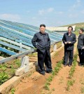 This undated photo released by North Korea's official Korean Central News Agency (KCNA) on June 21, 2013 shows North Korean leader Kim Jong-Un (L) visiting vegetable green houses on the Songhak Co-op Farm in Anju, South Pyongan.   (Courtesy of KCNA via Yonhap)