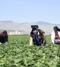 Eunice Gonzalez with her parents in Santa Marica, Calif. (Facebook/Photo credit: Jorge Flores)