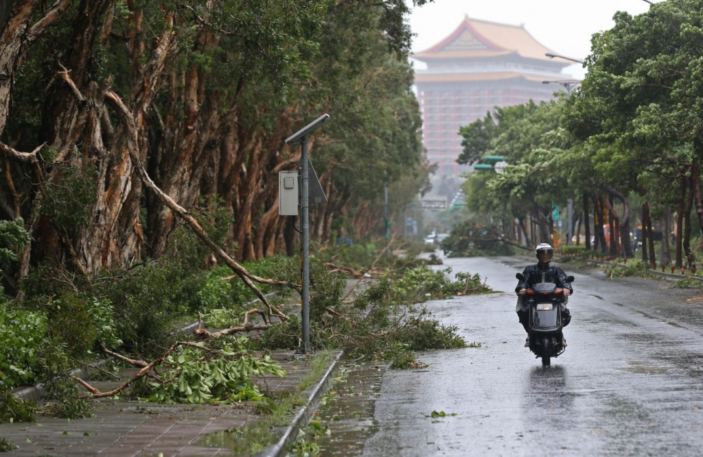 In this Aug. 8, 2015 photo, a scooter passes a line of trees brought down by strong winds from Typhoon Soudelor in Taipei, Taiwan. Soudelor brought heavy rains and strong winds to the island Saturday with winds speeds over 170 km per hour (100 mph) and gusts over 200 km per hour (120 mph) according to Taiwan's Central Weather Bureau. (AP Photo/Wally Santana)