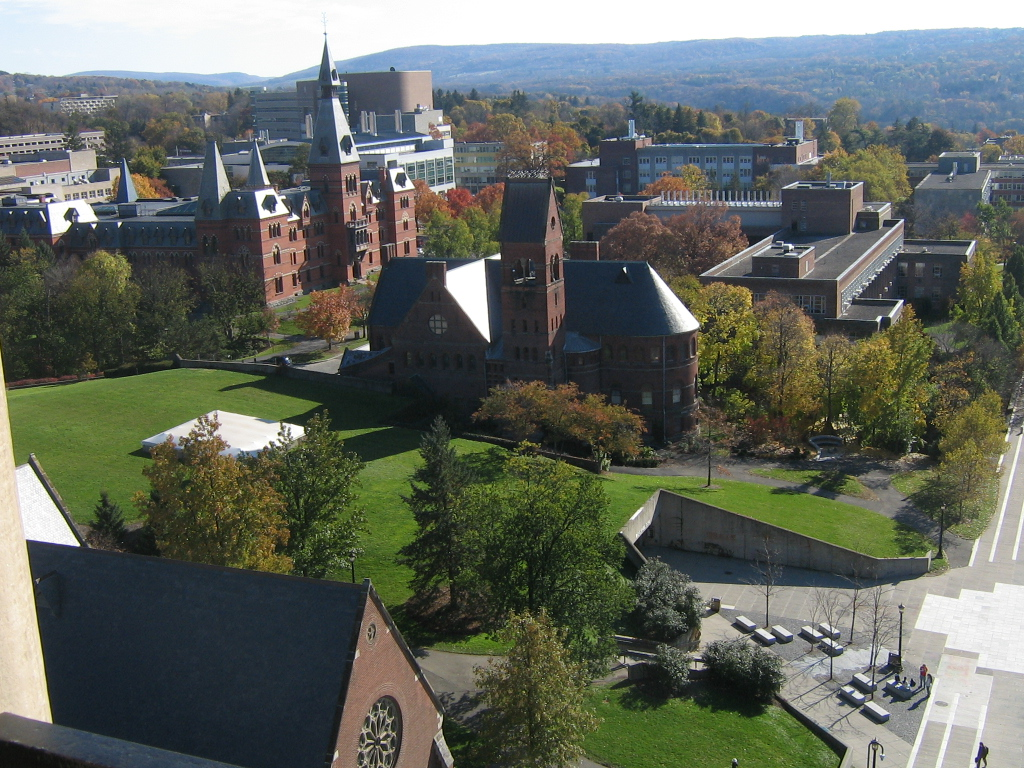 A view of Cornell University's campus from the top of McGraw Tower. (Courtesy of Julian Sorel via Flicker/Creative Commons)
