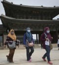 Tourists wear masks as a precaution against MERS, Middle East Respiratory Syndrome, virus as they visit Gyeongbok Palace, one of South Korea's well-known landmarks, in Seoul, South Korea. (AP Photo/Lee Jin-man)