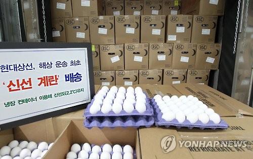 A total of 317,000 eggs shipped by South Korean shipping liner Hyundai Merchant Marine Co. await their quarantine process on Feb. 3, 2017. (Photo courtesy of Hyundai Merchant Marine Co.)