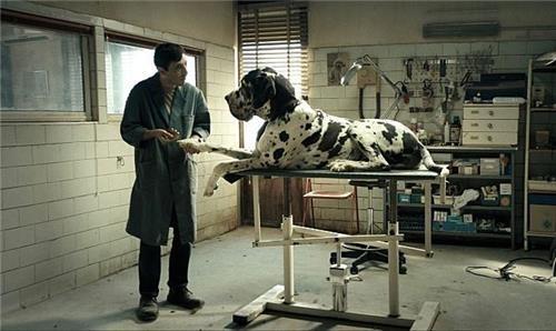"A still from ""Dogman"" (Yonhap)"